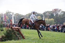 Touzaint Nicolas, (FRA), Debby<br /> Cross country<br /> Mondial du Lion - Le Lion d'Angers 2015<br /> © Dirk Caremans<br /> 17/10/15