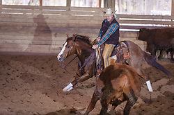 April 29 2017 - Minshall Farm Cutting 1, held at Minshall Farms, Hillsburgh Ontario. The event was put on by the Ontario Cutting Horse Association. Riding in the Open Class is Eric Van Boekel on Mister Boss Hog owned by the rider.