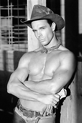 CyberViewX v5.11.30<br /> Model Code=67<br /> F/W Version=1.36 shirtless All American cowboy leaning against a barn stall
