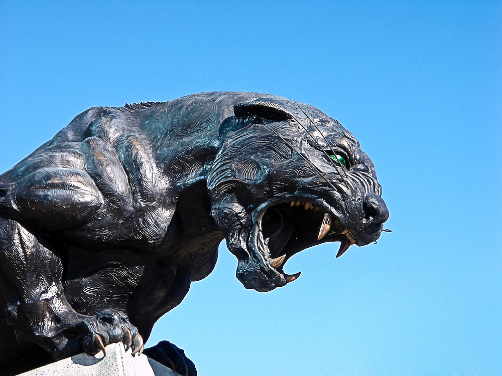 Iconic 9ft bronze panther sculpture stands guard at Bank of America Stadium. Charlotte, NC USA Nov.28,2009