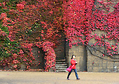 2012_10_21_Autumn_colour_SSI