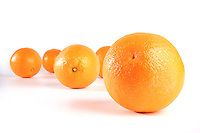 Studio shot of oranges on white background