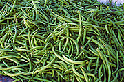Farm-fresh produce fresh Green beans, string beans, snap beans