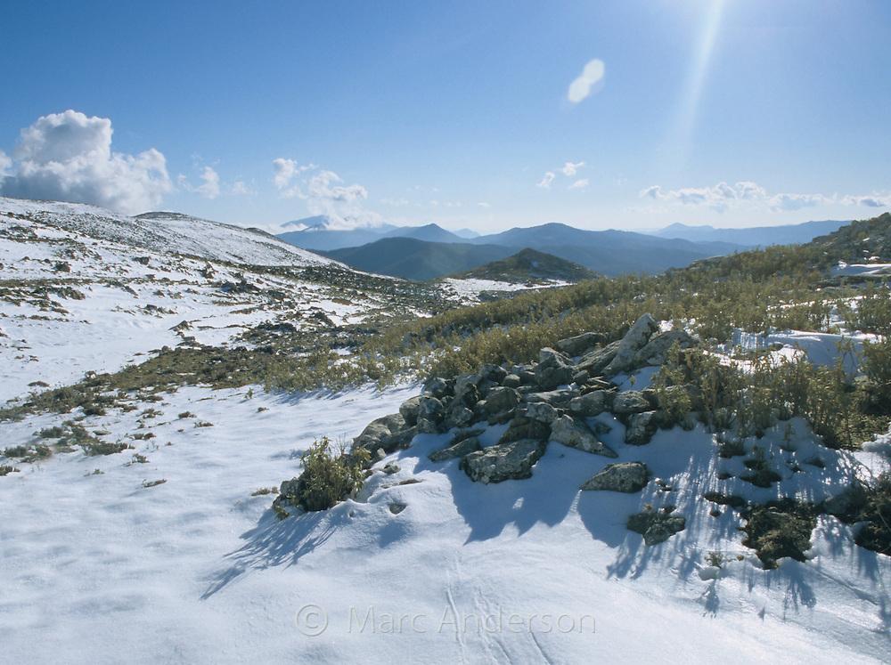Snow in the Sierra de las Nieves near Ronda, Malaga Province, Spain