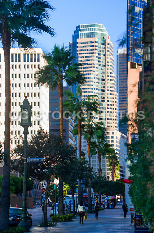 Los Angeles Buildings Downtown