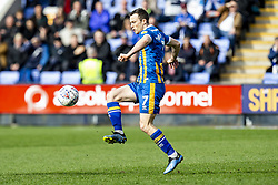 March 23, 2019 - Meadow, Shropshire, United Kingdom - Shaun Whalley of Shrewsbury Town during the Sky Bet League 1 match between Shrewsbury Town and Portsmouth at Greenhous Meadow, Shrewsbury on Saturday 23rd March 2019. (Credit Image: © Mi News/NurPhoto via ZUMA Press)