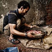 Un joven operario &quot;Zabbeleen&quot; criba el material con el que trabajan en un taller de Mokattam donde se clasifica y tritura diferentes tipos de pl&aacute;stico para reciclar. En medio del barrio de Manshiet Nasr a las afueras de El Cairo esta situado el asentamiento de Mokattam conocido como la &quot;Ciudad de la Basura&quot; , est&aacute; habitado por los Zabbaleen ,una comunidad de unos 45.000 cristianos coptos que viven desde hace varias d&eacute;cadas de reciclar...<br /> more &raquo;<br /> Un joven operario &quot;Zabbeleen&quot; criba el material con el que trabajan en un taller de Mokattam donde se clasifica y tritura diferentes tipos de pl&aacute;stico para reciclar. En medio del barrio de Manshiet Nasr a las afueras de El Cairo esta situado el asentamiento de Mokattam conocido como la &quot;Ciudad de la Basura&quot; , est&aacute; habitado por los Zabbaleen ,una comunidad de unos 45.000 cristianos coptos que viven desde hace varias d&eacute;cadas de reciclar los desperdicios que genera la capital egipcia: pl&aacute;stico, aluminio, papel y desechos &oacute;rganicos que transforman en compost . La mayor&iacute;a forman parte de la Asociaci&oacute;n para la Protecci&oacute;n del Ambiente (APE) una ONG que act&uacute;a en el &aacute;rea, cuyos objetivos son proteger el medio ambiente y aumentar el sustento de las recuperadores de basura de El Cairo. Seg&uacute;n la ONU, el trabajo que se realiza en Mokattam como uno de los diez mejores ejemplos del mundo en el mejoramiento medioambiental. El Cairo , Egipto, Junio 2011. ( Foto : Jordi Cam&iacute; )