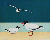 Transport yourself to the sunny seaside. Bring yourself to the ocean with this fine art piece by Jan Keteleer. The scene depicts two Blackheaded Seagulls at the beach. Such a simple image. Yet at the same time, it shows us the beauty to be found in the things we sometimes take for granted. A perfect choice for animal lovers, or those who dream of vacations by the sea. -<br /> <br /> BUY THIS PRINT AT<br /> <br /> FINE ART AMERICA<br /> ENGLISH<br /> https://janke.pixels.com/featured/two-black-headed-seagulls-on-the-beach-jan-keteleer.html<br /> <br /> <br /> WADM / OH MY PRINTS<br /> DUTCH / FRENCH / GERMAN<br /> https://www.werkaandemuur.nl/nl/shopwerk/Meeuwen-met-zwarte-kop-op-het-strand/500273/132