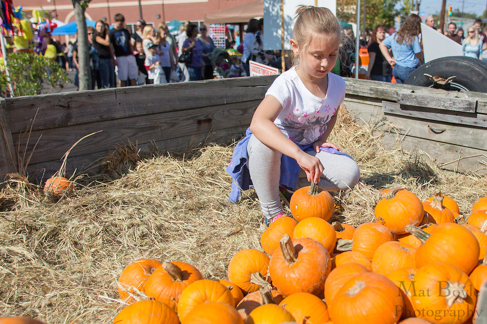 Isabella Cohen, 7 of Gloucester Township, picks out a pumpkin during the Blackwood Pumpkin Festival on Sunday October 14, 2012. (photo / Mat Boyle)