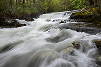 One of the many small waterfalls along the Middle Prong Trail of the Little River in Great Smoky Mountains National Park.