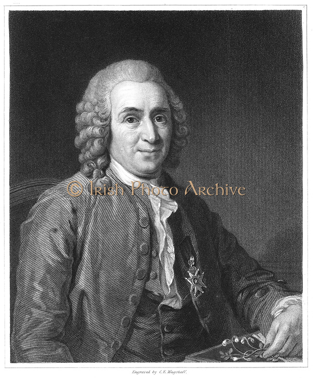 Linnaeus (Carl von Linne - 1707-1778) Swedish naturalist. From 'The Gallery of Portraits', Vol.IV, Charles Knight, London, 1835. Linnaeus is shown holding a sprig of Linnea borealis (Twinflower) a creeping evergreen shrub named in his honour.