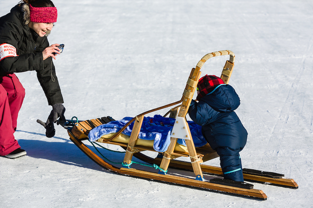 Handler takes photo of young child pushing small sled before the restart of the 42nd Iditarod Trail Sled Dog Race on Willow Lake in Southcentral Alaska.  Afternoon. Winter.