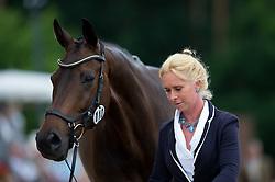 Hoy Bettina (GER) - Designer 10<br /> Horse Inspection <br /> CCI4*  Luhmuhlen 2014 <br /> © Hippo Foto - Jon Stroud