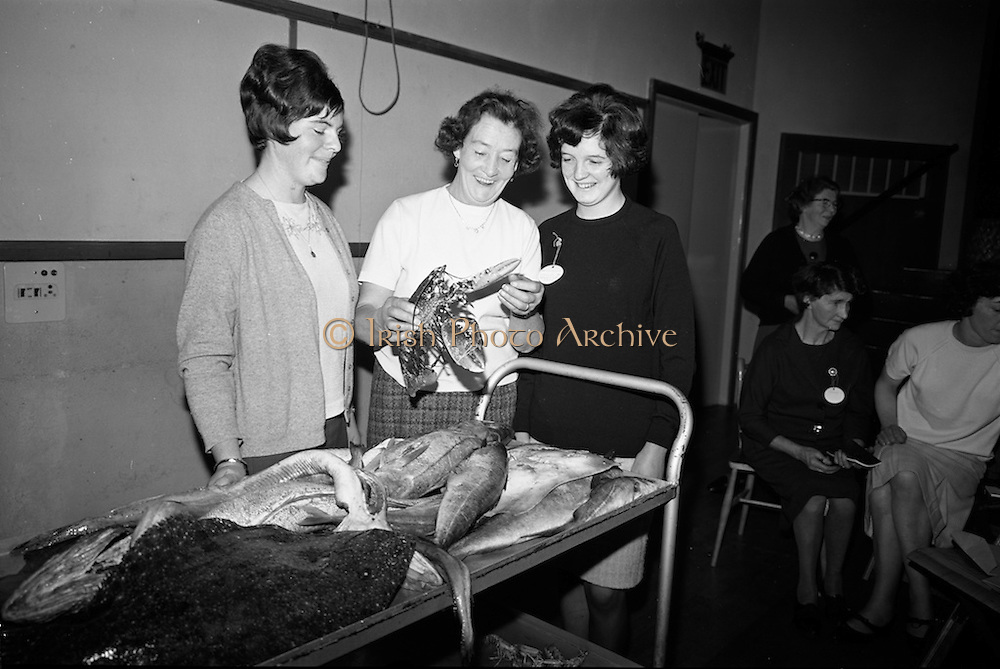 15/11/1966<br /> 11/15/1966<br /> 15 November 1966<br /> Fish Scholarship course at I.C.A. at An Grianan, Termonfeckin, Co. Louth, organised by Bord Iascaigh Mhara. The delegates from I.C.A. Guilds around the country were given a course in fish cookery and lectures and demonstration techniques to impart to their Guilds. Picture shows (l-r): Mrs. Margaret Belton, Kenagh, Co. Longford; Mrs. S. Lynch, Virginia, Co. Cavan and Miss Irene Richardson, Ballinamore, Co. Leitrim.