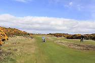 Royal County Down Links Golf Course home of the 2015 Dubai Duty Free Irish Open hosted by Rory Foundation, Newcastle, Co. Down, Northern Ireland.<br /> Picture: Eoin Clarke www.golffile.ie