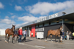 Team Suisse<br /> Departure of the horses to the Rio Olympics from Liege Airport - Liege 2016<br /> © Hippo Foto - Dirk Caremans<br /> 30/07/16