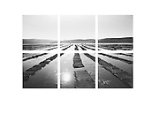 Tod at Marshall: Grid series#1; editions number 2/3; Black and white archival prints; six 14 by 14 inches; total installation size is aproximately 46 by 30 inches; mounted on metal with wood cleats;price available on request.