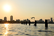 Adolescents jump off pilings in Lake Michigan on a hot July evening in the summer of 2011.