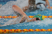 Andrew Spoor, mens 200m freestyle, New Zealand Short Course Swimming Championships, Sir Owen G. Glenn National Aquatic Centre, AUT Millennium, Auckland. 11 August 2015. Copyright Photo: William Booth / www.photosport.nz