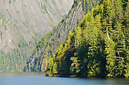 The magnificent cliffs of Misty Fjords National Monument, Alaska.