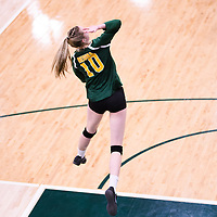 2nd year middle blocker Brooklyn Reynolds (10) of the Regina Cougars in action during Women's Volleyball home game on November 18 at Centre for Kinesiology, Health and Sport. Credit: Arthur Ward/Arthur Images