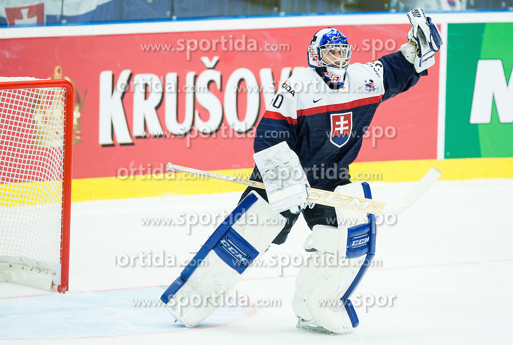 Jan Laco of Slovakia celebrates after penalty shots during Ice Hockey match between Slovakia and Denmark at Day 2 in Group B of 2015 IIHF World Championship, on May 2, 2015 in CEZ Arena, Ostrava, Czech Republic. Photo by Vid Ponikvar / Sportida