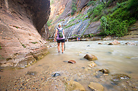 The Narrows, Zion National Park, located in the Southwestern United States, near Springdale, Utah.