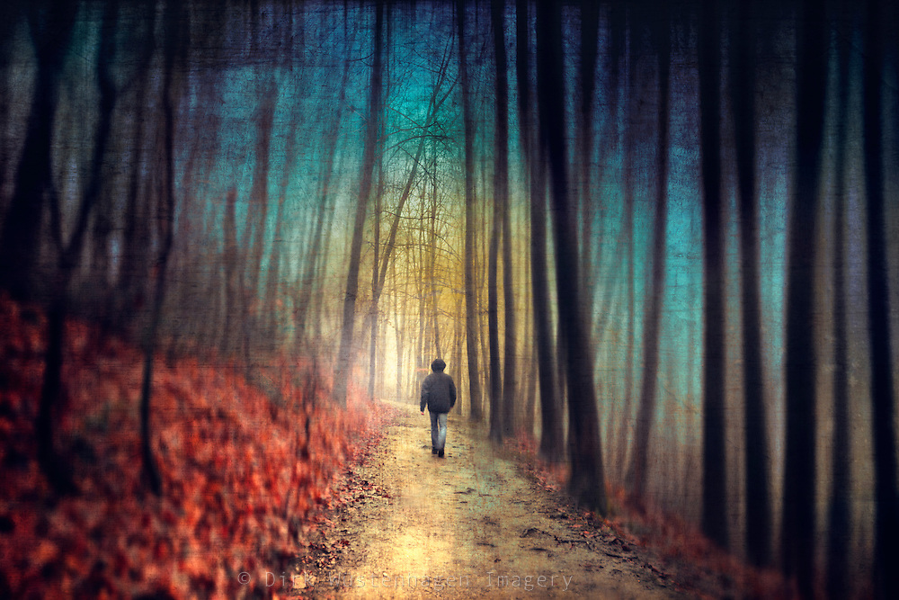 Man walking through a dreamy colourful forest. Manipulated photo.<br />