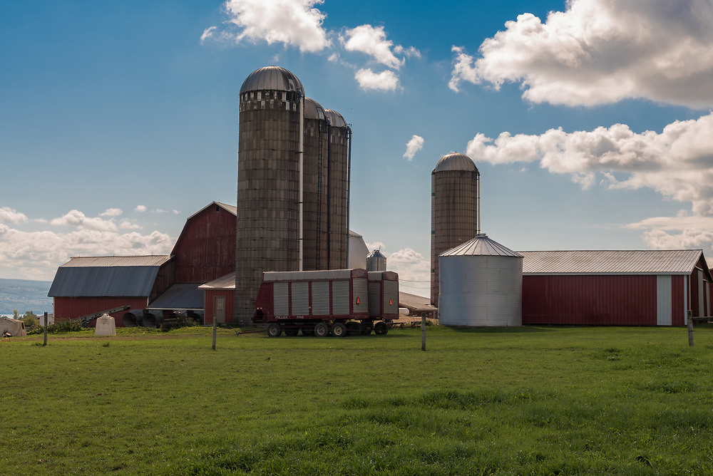 Four silos, several barns and tractors on green grass with a blue sky background