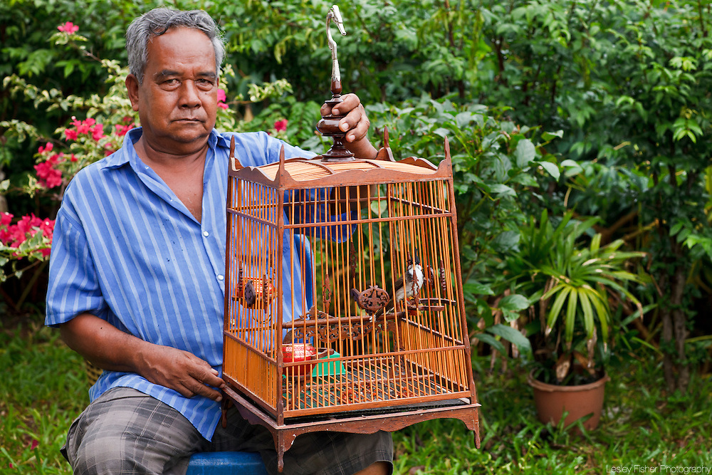 Local elder in Koh Samui holding his singing bird before a competition