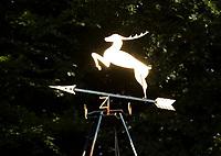 HOOG SOEREN -  windwijzer met logo Veluwse Golf Club bestaat 60 jaar. COPYRIGHT KOEN SUYK