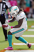 Miami Dolphins running back Jay Ajayi (23) pumps his fist and celebrates after scoring a touchdown on a 4 yard run that ties the second quarter score at 14-14 during the 2016 NFL week 5 regular season football game against the Tennessee Titans on Sunday, Oct. 9, 2016 in Miami Gardens, Fla. The Titans won the game 30-17. (©Paul Anthony Spinelli)