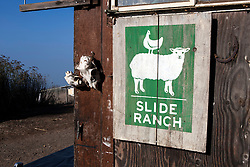 Logo on side of a workshop, Slide Ranch, Golden Gate National Recreation Area, Muir Beach, California, United States of America