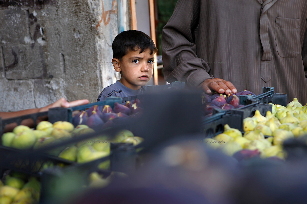 Fig harvest has recently begun in Kurin. A boy looks at a trader loading a pickup to deliver the boxes full of first and fresh figs to Maarat Misreen (north of Idlib) to a central market.<br />