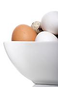 Close up of eggs - studio shot