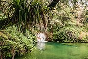 Topes de Collantes nature reserve, Escambray Mountains, Cuba