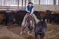 April 30 2017 - Minshall Farm Cutting 2, held at Minshall Farms, Hillsburgh Ontario. The event was put on by the Ontario Cutting Horse Association. Riding in the Non-Pro Class is Greg Wilde on Bobby Cee Lena owned by the rider.
