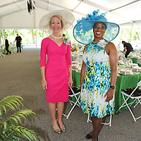Co-Chairs:  Carolyn Farrell, Vanessa Cooksey