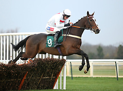 My Mate Mark ridden by Daryl Jacob wins the Sodick ÔNational HuntÕ NovicesÕ Hurdle at Warwick Racecourse.