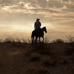 Arizona Cowboy