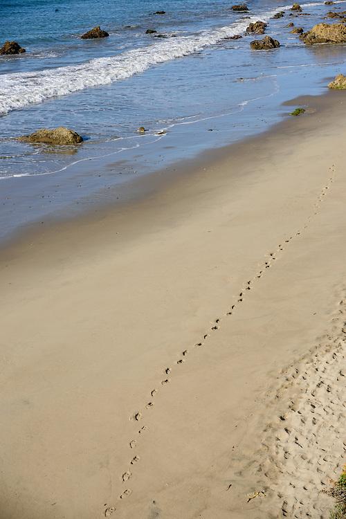 Footprints, El Matador State Beach, Malibu, California
