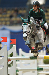 02.11.2013, Olympiahalle, Muenchen, GER, Munich Indoors, im Bild Alexantra Fricker, SUI, auf Albfuehren's Companion, // during the Munich Indoors at the Olympiahalle in Muenchen, Germany on 2013/11/02. EXPA Pictures © 2013, PhotoCredit: EXPA/ Eibner-Pressefoto/ Buthmann<br /> <br /> *****ATTENTION - OUT of GER*****