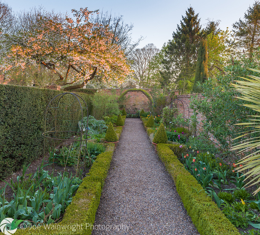 The Long Walk in April at Wollerton Old Hall Garden, Shropshire