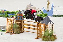Thomas Sandgaard, (DEN), Amarone - Team & Individual Competition Jumping Speed - Alltech FEI World Equestrian Games™ 2014 - Normandy, France.<br /> © Hippo Foto Team - Leanjo De Koster<br /> 02-09-14