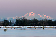 Sunset view of Mount Baker from the Traboulay PoCo Trail in Port Coquitlam, British Columbia, Canada.  The river in the foreground is the Pitt River in a spot near the DeBoville Slough. Mount Baker itself is in Washington State, USA.