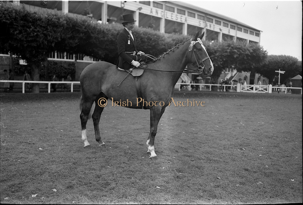 """09/08/1962<br /> 08/09/1962<br /> 09 August 1961<br /> RDS Horse Show, Ballsbridge Dublin, Thursday. <br /> Picture shows Ladies Hunter Champion of Show winner of Ladies Hunter Perpetual Trophy. Parading in the  Enclosure of RDS, """"Enchanted"""" owned and ridden by Mrs David Price, Kilmokea, Campile, Co. Wexford."""