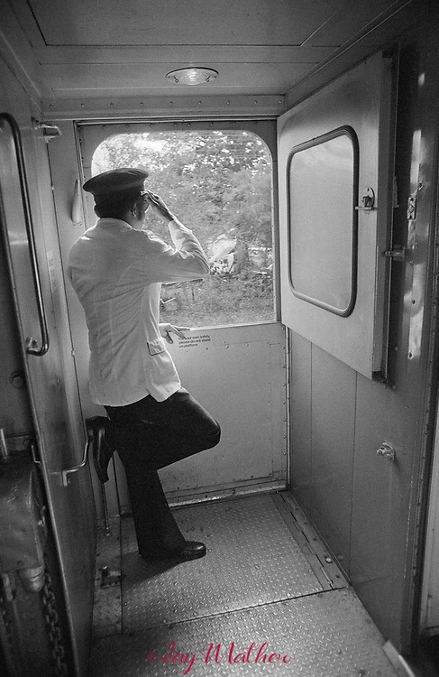 The Amtrak Floridian passenger train that operated between Chicago, Illinois and Miami, Florida ceased operation in 1979.  It was the last passenger train that serviced Louisville. Kentucky as well.  These photographs document the final days for the workers in the Chicago Yards, the Amtrak employees aboard the train, an engineer,, W.C. Roddy, that drove the train between Louisville and Bowling Green, KY and the passengers who enjoyed riding the rails.<br /> <br /> Pictured:  Henry LaSane, A Floridian porter, looks out for his family who has come to the Wildwood, Florida station to meet him.