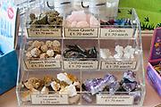 Geological samples specimens display on sale at Radstock museum, Somerset, England, UK