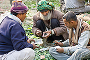 INDIA, NEW DELHI:  Indian men bargaining and exchanging money in the vegetable market in New Delhi.