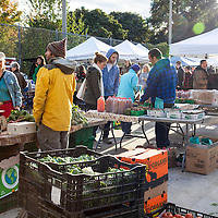 Dufferin Grove Farmers market in late October